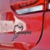 German Day Monza Con Audi Rs Club, 9 Marzo 2014 - ultimo messaggio di Piazza